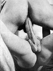 gay hairy muscle sex